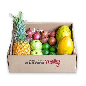 热带水果礼盒 10斤
